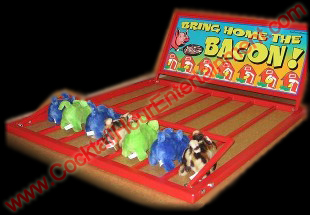 pig race carnival game